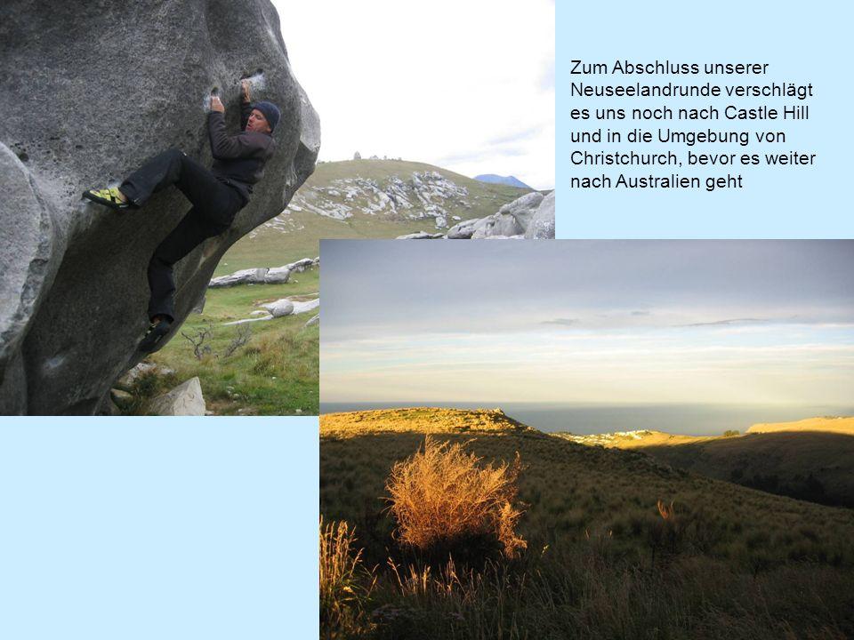 Zum Abschluss unserer Neuseelandrunde verschlägt es uns noch nach Castle Hill und in die Umgebung von Christchurch, bevor es weiter nach Australien geht