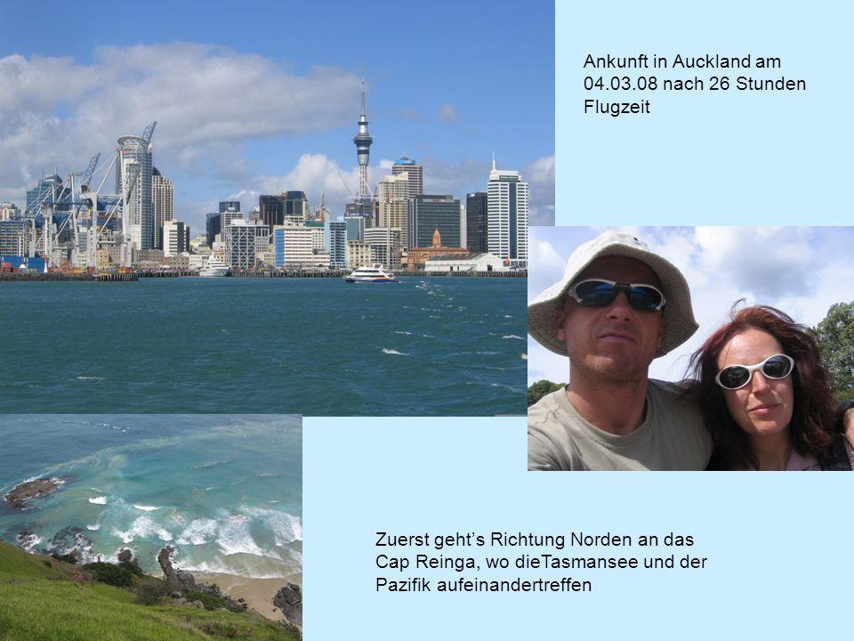 Ankunft in Auckland am 04.03.08 nach 26 Stunden Flugzeit Zuerst gehts Richtung Norden an das Cap Reinga, wo dieTasmansee und der Pazifik aufeinandertreffen