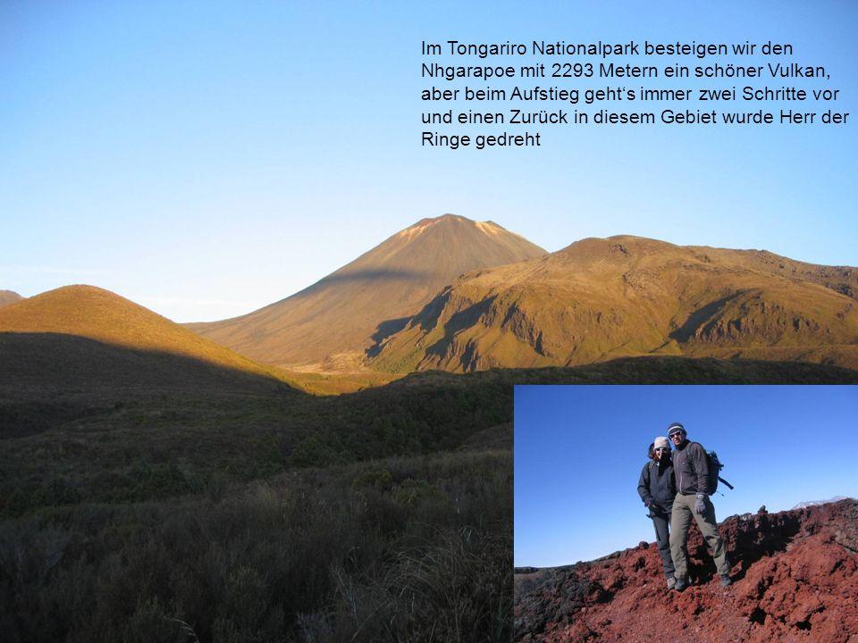 Im Tongariro Nationalpark besteigen wir den Nhgarapoe mit 2293 Metern ein schöner Vulkan, aber beim Aufstieg gehts immer zwei Schritte vor und einen Zurück in diesem Gebiet wurde Herr der Ringe gedreht