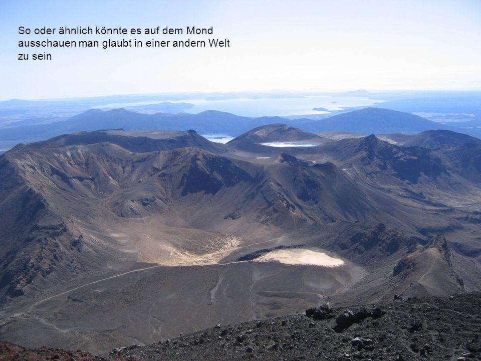 Die erste Station auf der Südinsel ist Takaka das mit einem der besten Sportklettergebiete Neuseelands auf uns wartet, aber auch sonst ist es Rund um die Felsen sehr schön, von dort geht es weiter entlang der Westküste über die Pancakes zu den Neuseeländischen Alpen mit dem höchsten Gipfel dem Aoraki mit 3764m