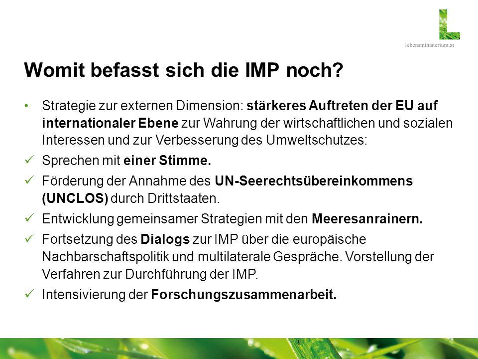 Womit befasst sich die IMP noch? Strategie zur externen Dimension: stärkeres Auftreten der EU auf internationaler Ebene zur Wahrung der wirtschaftlich