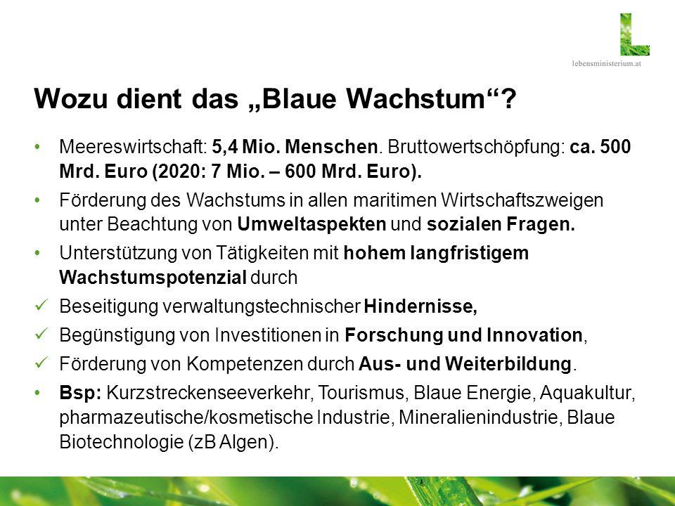 Wozu dient das Blaue Wachstum? Meereswirtschaft: 5,4 Mio. Menschen. Bruttowertschöpfung: ca. 500 Mrd. Euro (2020: 7 Mio. – 600 Mrd. Euro). Förderung d