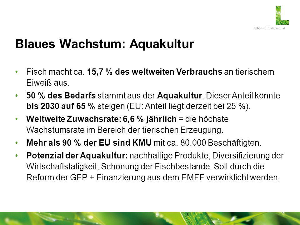 Blaues Wachstum: Aquakultur Fisch macht ca. 15,7 % des weltweiten Verbrauchs an tierischem Eiweiß aus. 50 % des Bedarfs stammt aus der Aquakultur. Die