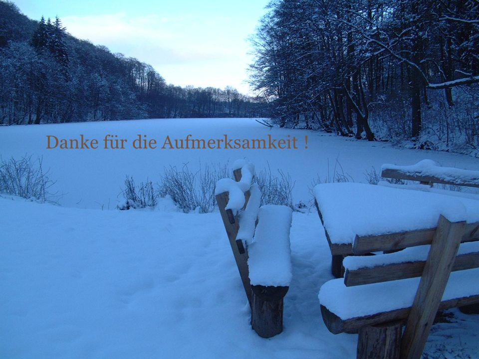 14. Nov. 20091000-Seen-Forum Danke für die Aufmerksamkeit !