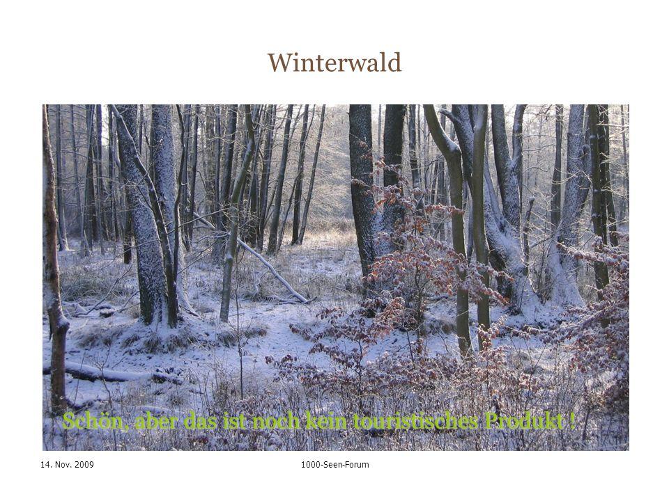 14. Nov. 20091000-Seen-Forum Winterwald Schön, aber das ist noch kein touristisches Produkt !