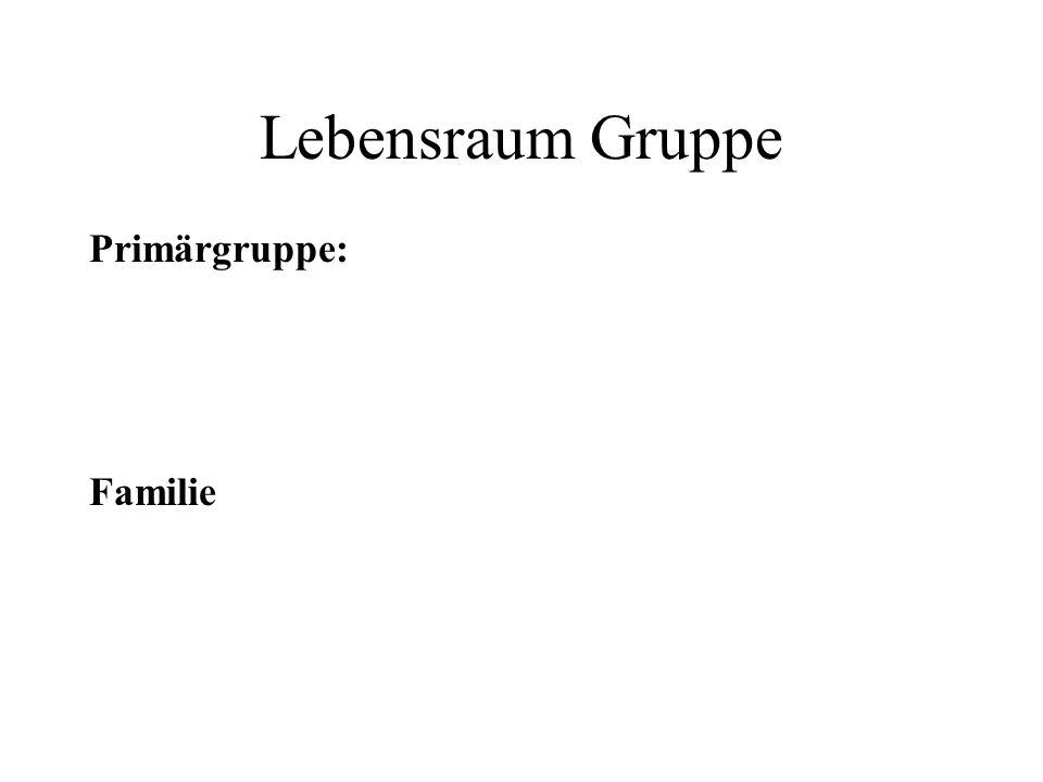 Lebensraum Gruppe Sekundärgruppe: Alle Gruppen außerhalb der Familie ( z. B. Schule, Verein... )