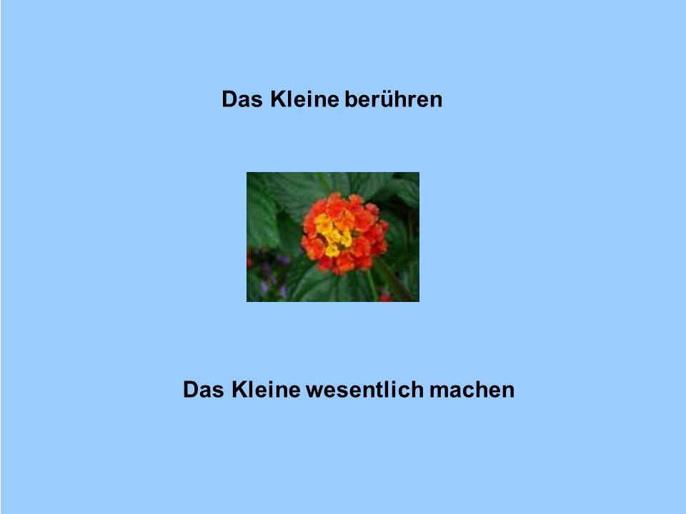 © Dr. Kai Romhardt www.romhardt.com www.achtsame-wirtschaft.de Das Kleine berühren Das Kleine wesentlich machen