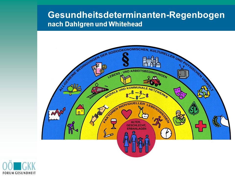 S t i c h w o r t eS t i c h w o r t e Gesundheitsdeterminanten-Regenbogen nach Dahlgren und Whitehead