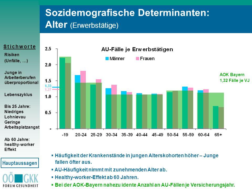 S t i c h w o r t eS t i c h w o r t e Sozidemografische Determinanten: Alter (Erwerbstätige) Risiken (Unfälle, …) Junge in Arbeiterberufen überpropor