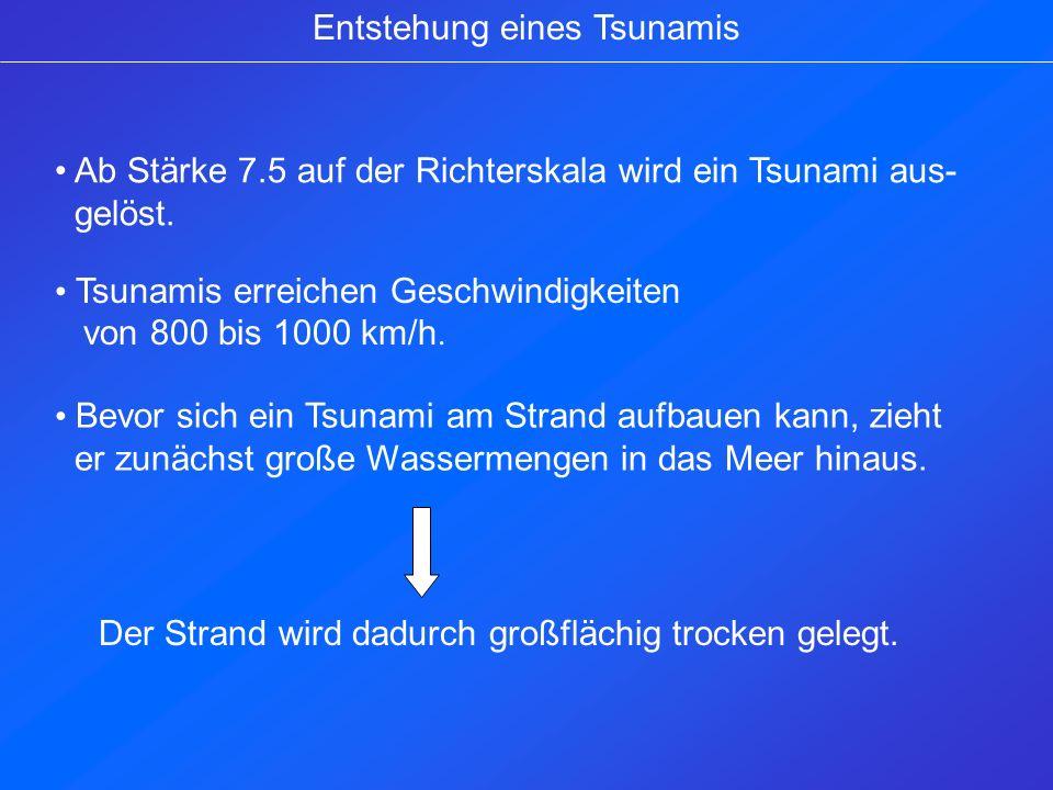 Entstehung eines Tsunamis Ab Stärke 7.5 auf der Richterskala wird ein Tsunami aus- gelöst. Tsunamis erreichen Geschwindigkeiten von 800 bis 1000 km/h.