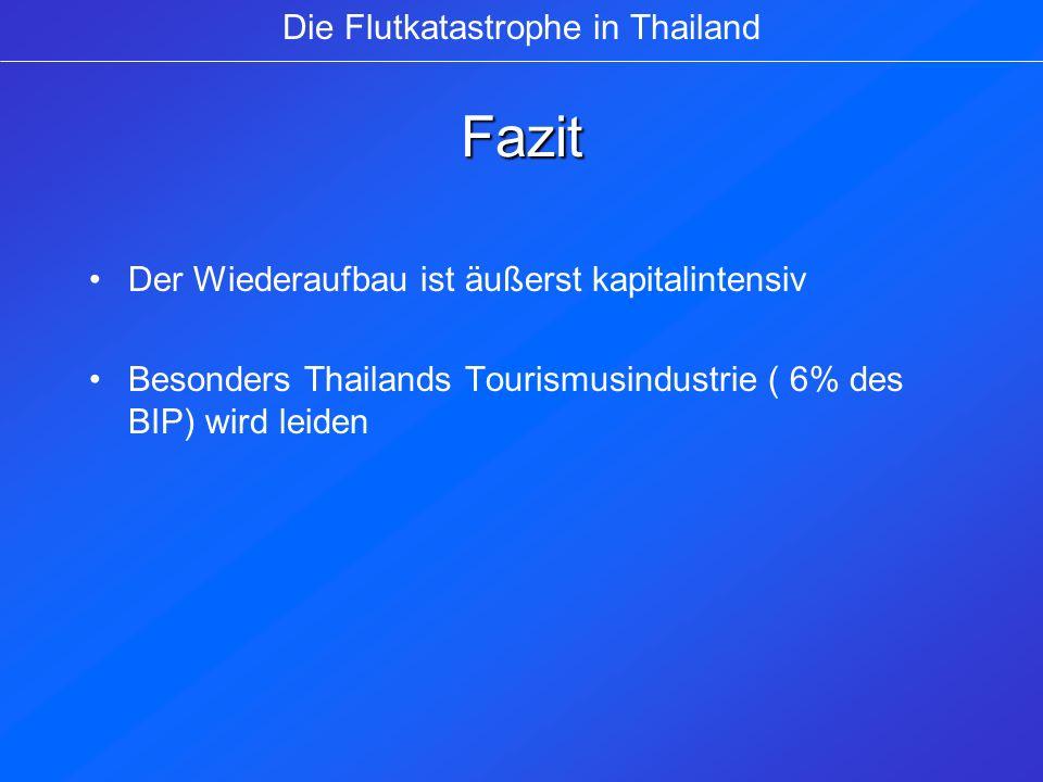 Fazit Der Wiederaufbau ist äußerst kapitalintensiv Besonders Thailands Tourismusindustrie ( 6% des BIP) wird leiden Die Flutkatastrophe in Thailand