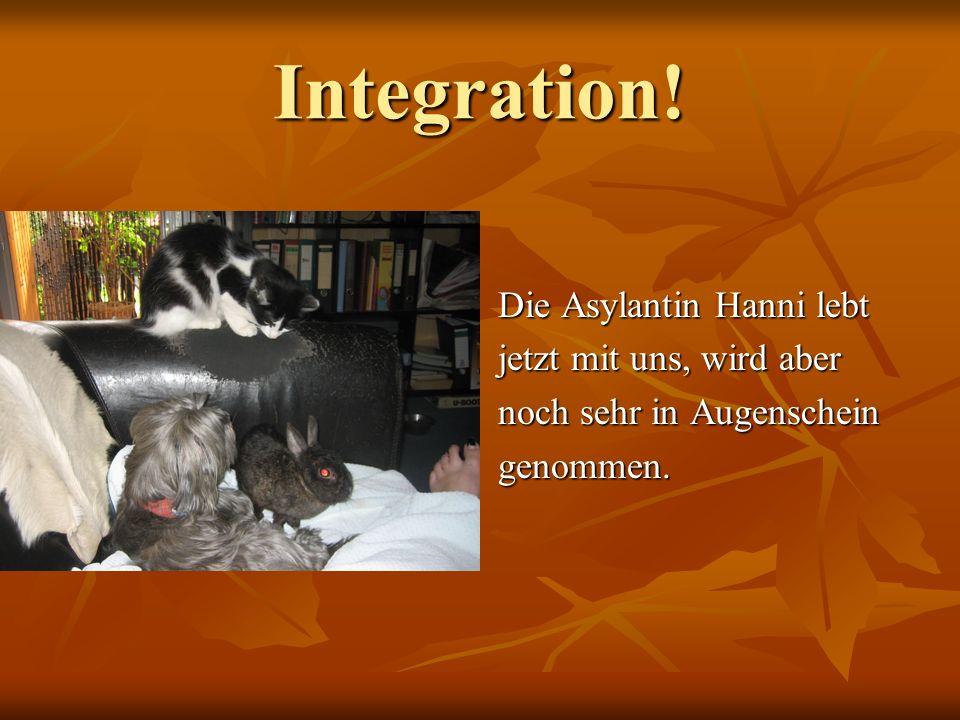 Integration! Die Asylantin Hanni lebt jetzt mit uns, wird aber noch sehr in Augenschein genommen.