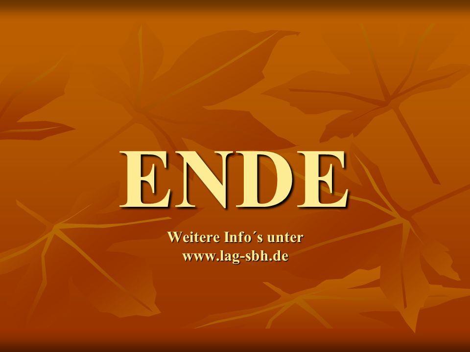 ENDE Weitere Info´s unter www.lag-sbh.de