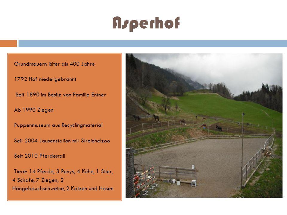 Asperhof Grundmauern älter als 400 Jahre 1792 Hof niedergebrannt Seit 1890 im Besitz von Familie Entner Ab 1990 Ziegen Puppenmuseum aus Recyclingmater