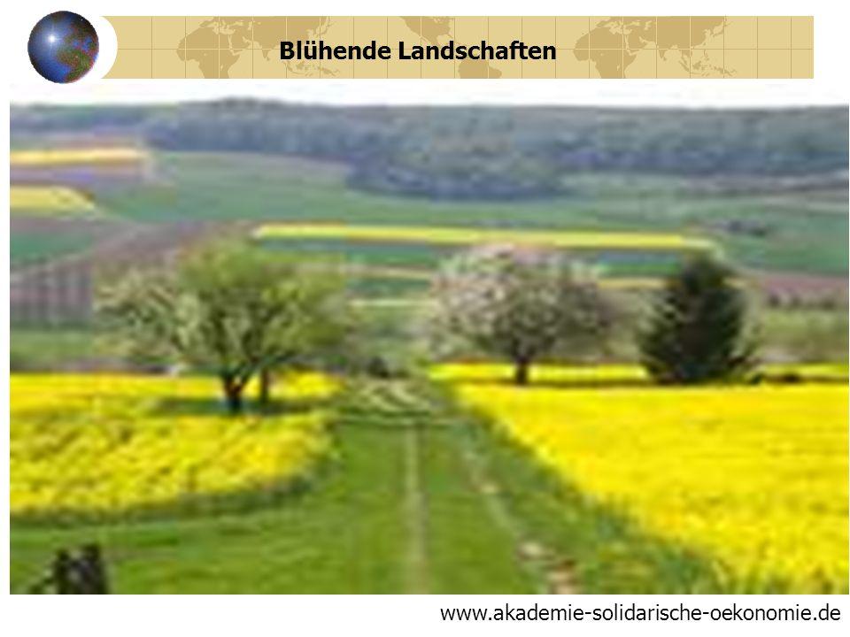 Deutschland 2012 BIP pro Kopf: 43.742,00 US-Dollar Verfügbares Einkommen pro Kopf: 18450,00 Vermögen pro Kopf: 111.324,00 Produktivitätssteigerung: 1,8% 30 Tage Urlaub im Jahr www.akademie-solidarische-oekonomie.de