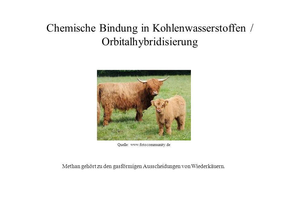 Quelle: www.fotocommunity.de Chemische Bindung in Kohlenwasserstoffen / Orbitalhybridisierung Methan gehört zu den gasförmigen Ausscheidungen von Wied