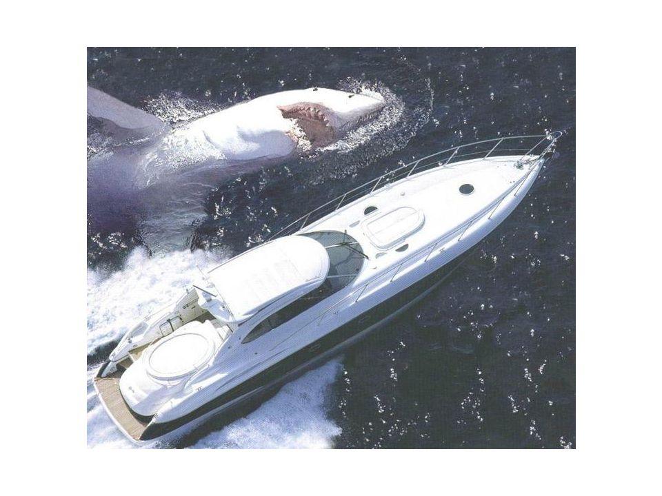 Ein Ausflug mit einer Yacht ist schön, kann aber auch gefährlich sein.