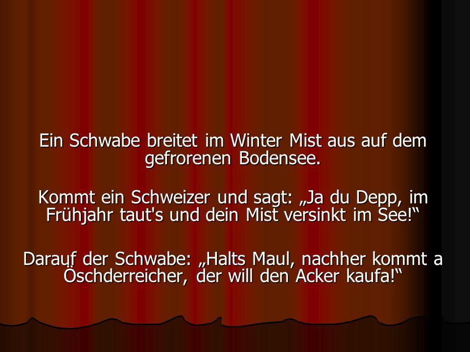 Ein Schwabe breitet im Winter Mist aus auf dem gefrorenen Bodensee. Kommt ein Schweizer und sagt: Ja du Depp, im Frühjahr taut's und dein Mist versink