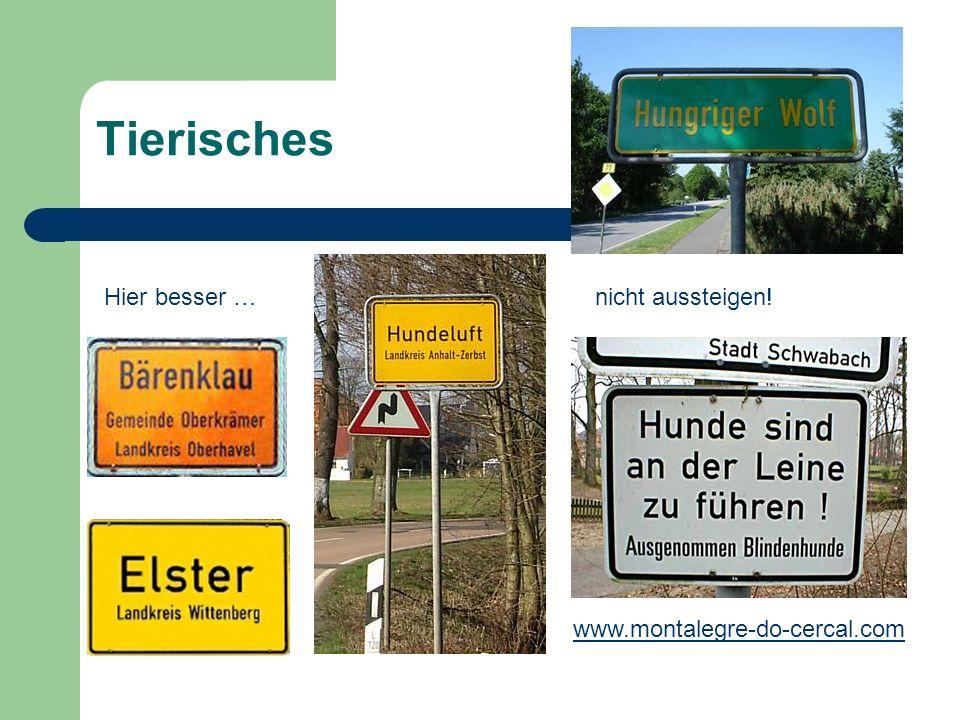 Tierisches www.montalegre-do-cercal.com Hier besser …nicht aussteigen!