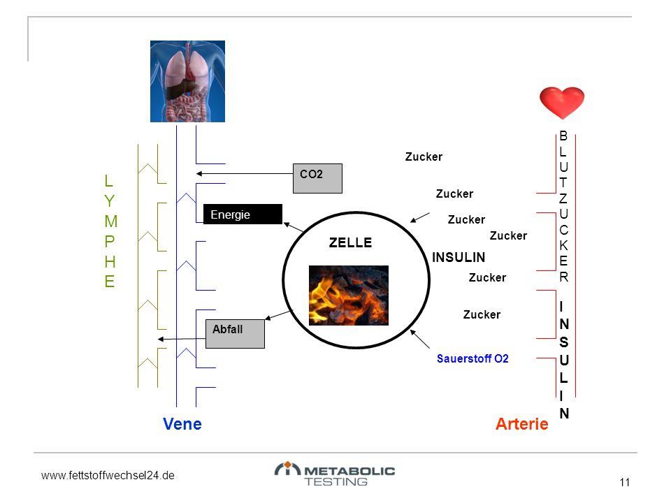 www.fettstoffwechsel24.de 11 Zucker Sauerstoff O2 ENERGIE Abfall CO2 ZELLE LYMPHELYMPHE VeneArterie BLUTZUCKERBLUTZUCKER Zucker Energie INSULININSULIN