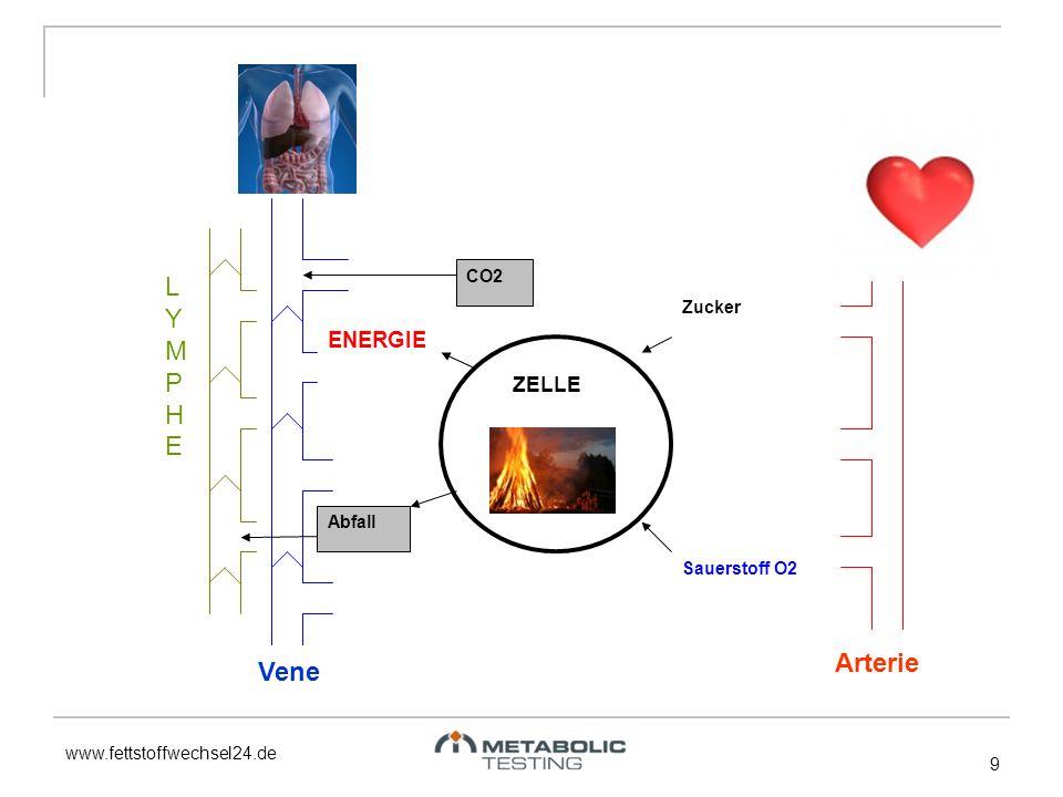www.fettstoffwechsel24.de 9 Zucker Sauerstoff O2 ENERGIE Abfall CO2 ZELLE LYMPHELYMPHE Vene Arterie
