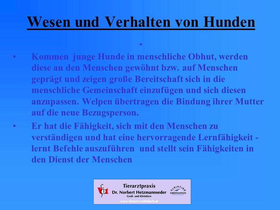 www.tierarzt-rohrbach.at Wesen und Verhalten von Hunden.