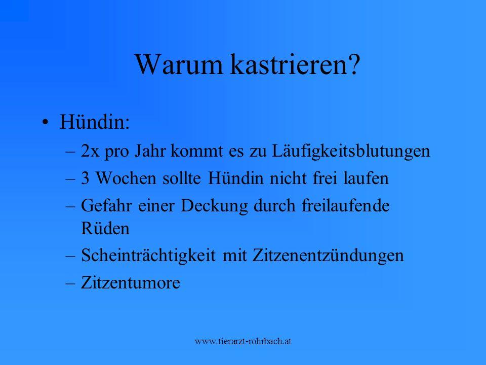 www.tierarzt-rohrbach.at Warum kastrieren.