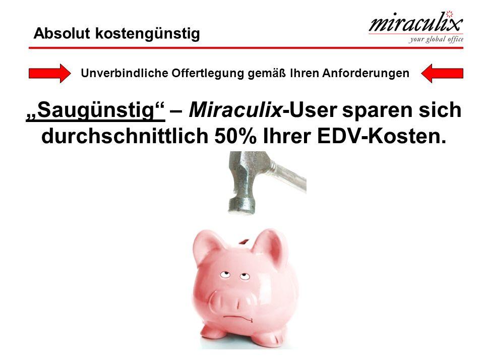 Saugünstig – Miraculix-User sparen sich durchschnittlich 50% Ihrer EDV-Kosten.