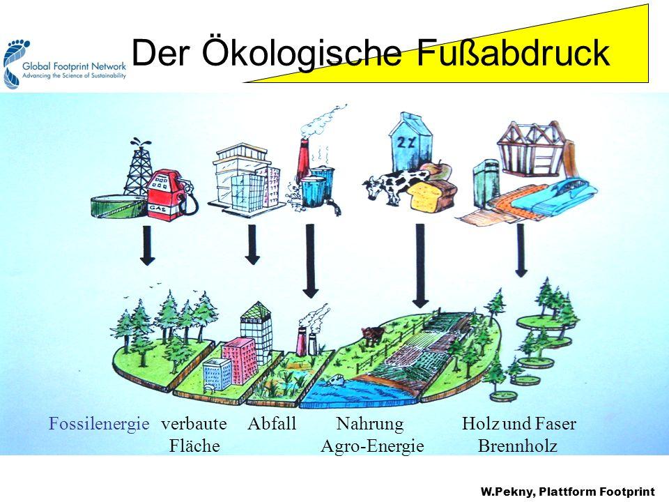 Footprint components Fossilenergie verbaute Abfall Nahrung Holz und Faser Fläche Agro-Energie Brennholz Der Ökologische Fußabdruck W.Pekny, Plattform
