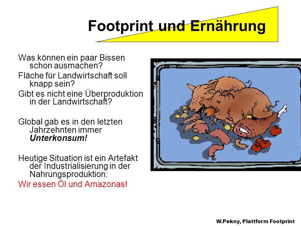 Was können ein paar Bissen schon ausmachen? Fläche für Landwirtschaft soll knapp sein? Gibt es nicht eine Überproduktion in der Landwirtschaft? Global