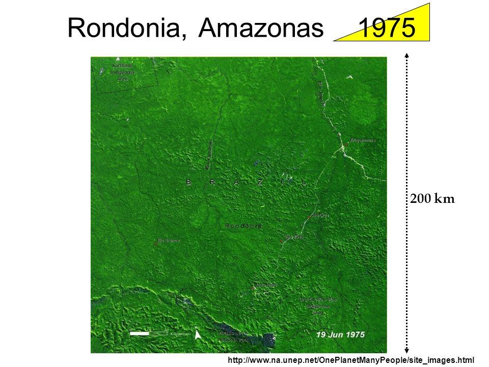 Rondonia, Amazonas 1975 http://www.na.unep.net/OnePlanetManyPeople/site_images.html 200 km