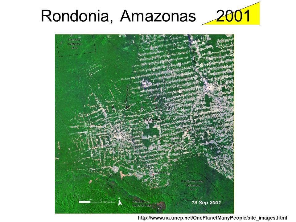 Rondonia, Amazonas 2001 http://www.na.unep.net/OnePlanetManyPeople/site_images.html