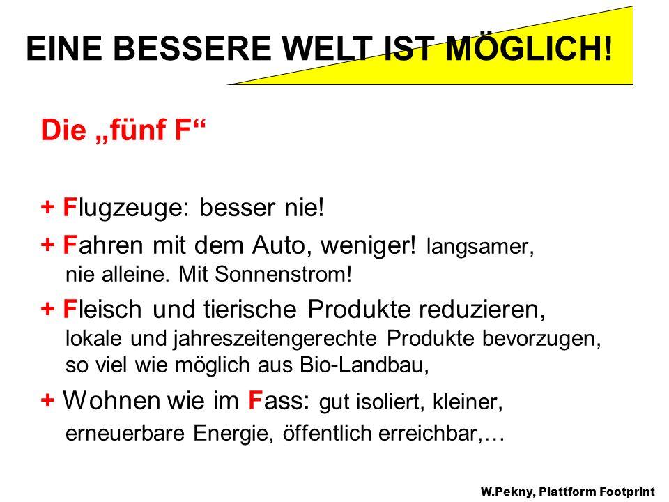 Die fünf F + Flugzeuge: besser nie! + Fahren mit dem Auto, weniger! langsamer, nie alleine. Mit Sonnenstrom! + Fleisch und tierische Produkte reduzier