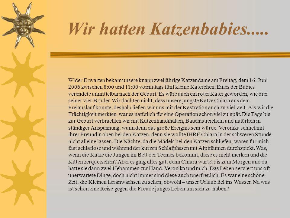 10.7.2006 – Frauchen ist im Kofferpackstress, deshalb gibts kaum Fotos im Moment!