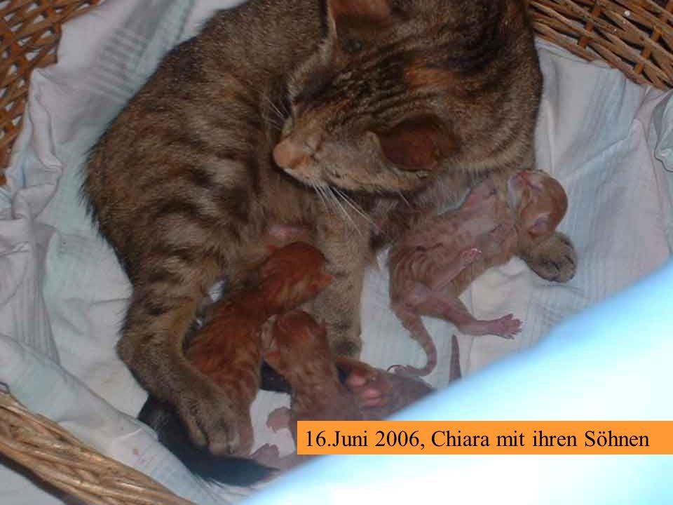16.Juni 2006, Chiara mit ihren Söhnen