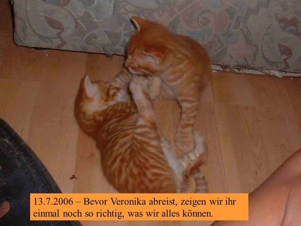 10.7.2006 – Na klar, IHREN Sebastian fotografiert sie ja ständig!