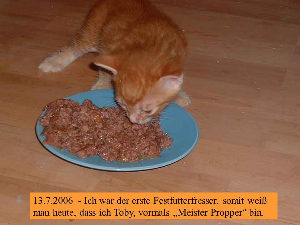 13.7.2006 – Wir fressen schon ganz alleine !
