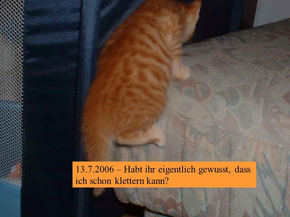 13.7.2006 – Na ich muss mich doch ordentlich von Kleinfrauchen verabschieden, ehe sie ins Camp fährt.
