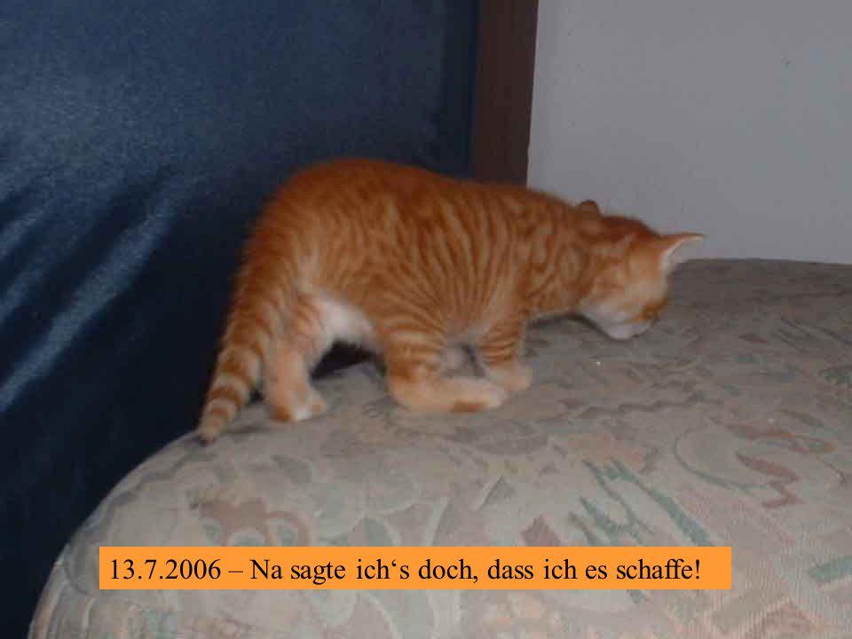 13.7.2006 – Na, ein Stückerl noch, dann hab ichs !