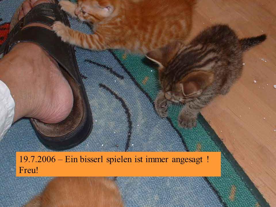 19.7.2006 – Na und wer bin ich Nr. 3 natürlich!
