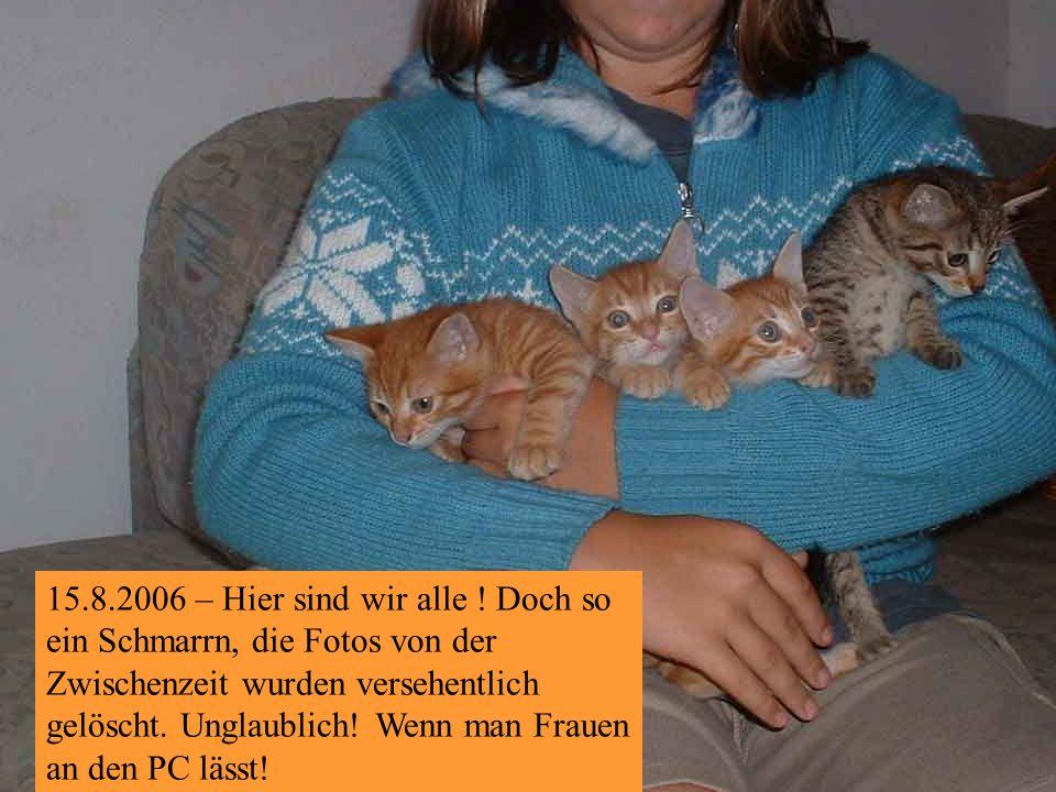 19.7.2006 – Ein bisserl spielen ist immer angesagt ! Freu!