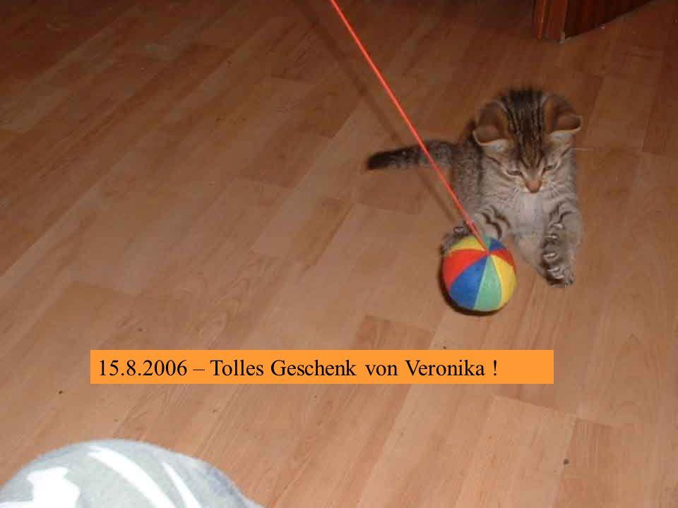 15.8.2006 – Ein Brüderpaar !