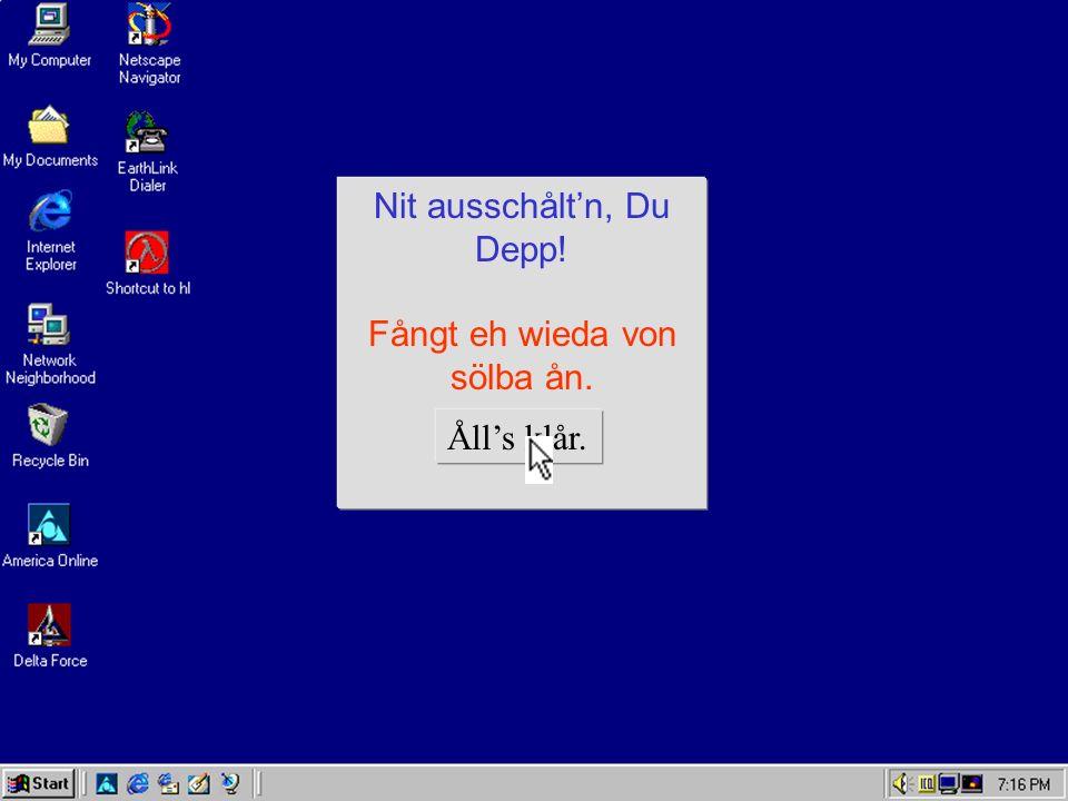 Des wår a Bledsinn!-FATAL ERROR Der Krempl is hetza hin.