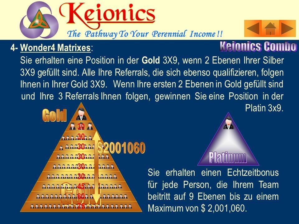 Sie erhalten eine Position in der Silber 3X9, wenn 2 Ebenen Ihrer Bronze 3X9 gefüllt sind.