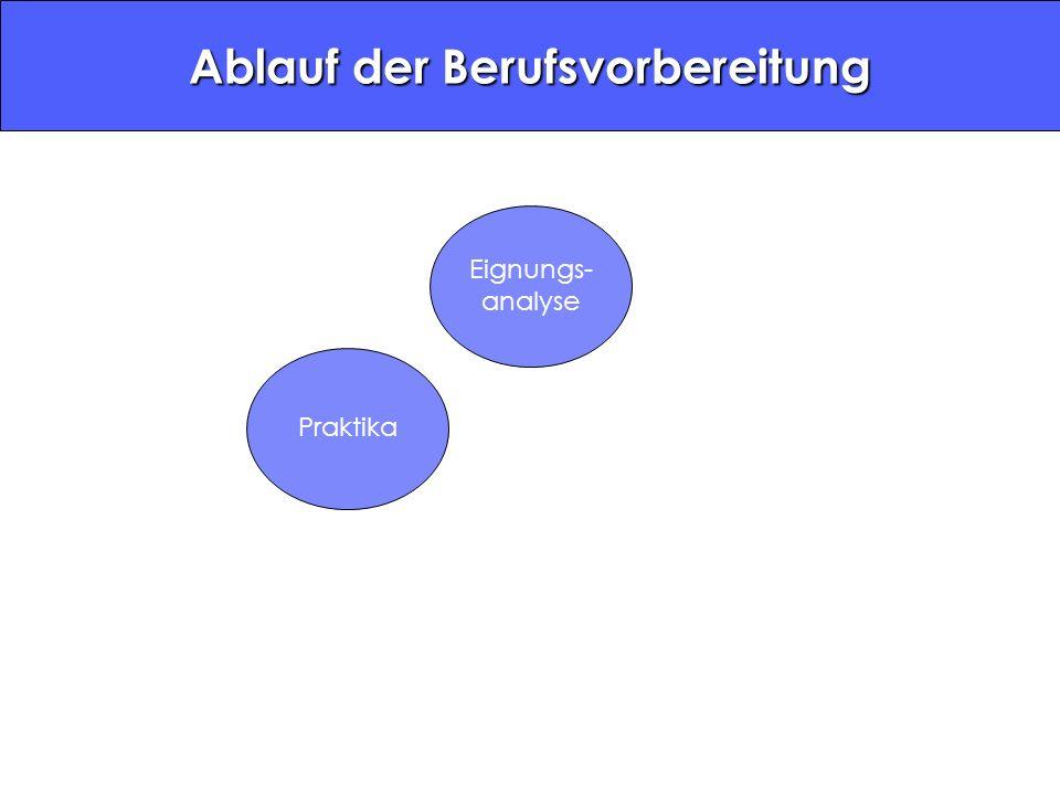 Eignungs- analyse Praktika Ablauf der Berufsvorbereitung