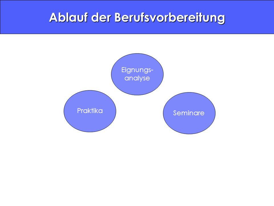 Eignungs- analyse PraktikaSeminare Ablauf der Berufsvorbereitung