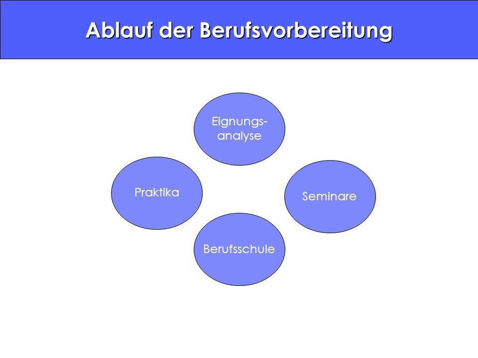 Eignungs- analyse PraktikaBerufsschuleSeminare Ablauf der Berufsvorbereitung