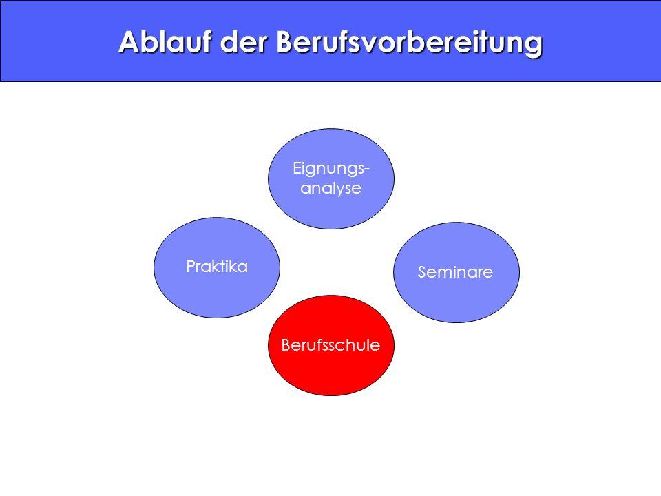 Ablauf der Berufsvorbereitung Eignungs- analyse PraktikaBerufsschuleSeminare
