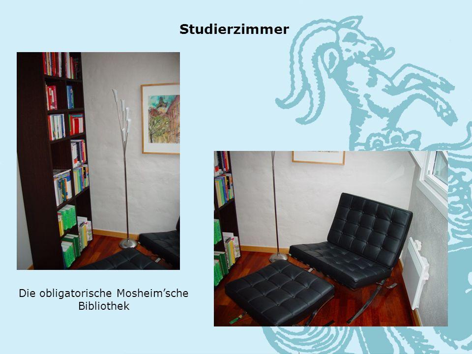 Die obligatorische Mosheimsche Bibliothek Studierzimmer