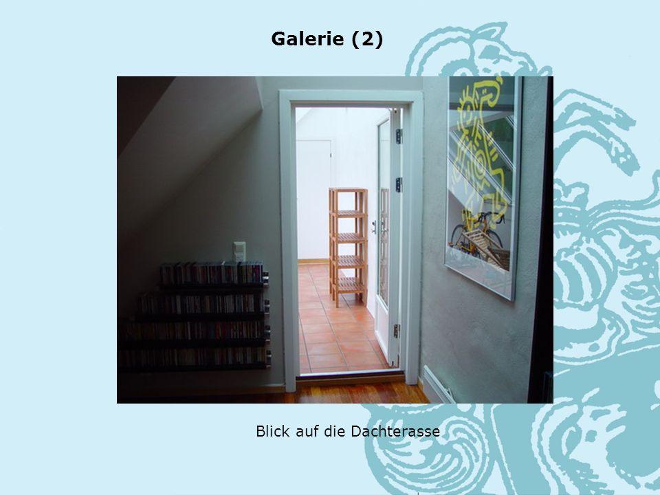 Blick auf die Dachterasse Galerie (2)